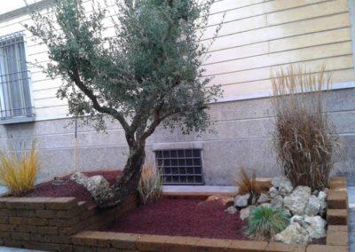 allestimento Giardini di Natale a Faenza