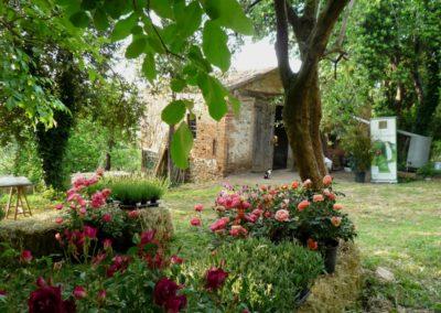 allestimento convento Santarcangelo Balconi Fioriti