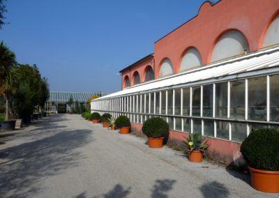 vivaio_piazzali_capannone1