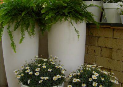 vivaio_vasi_fioriture